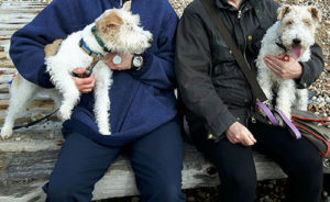 Alice_with_rescued_foxx_terrier_Becks