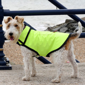 Alice modelling an Alice Foxx City Slicker dog raincoat in breathable yellow Aclimatise fabric