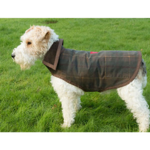 Alice modelling an Alice Foxx Deluxe Country dog coat