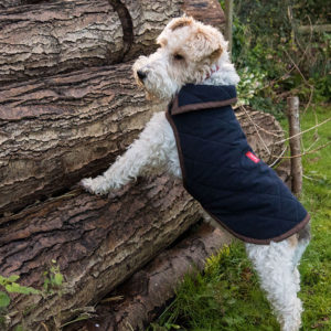 Alice modelling an Alice Foxx Monaco dog coat