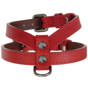 The Alice Foxx Asta dog harness in red