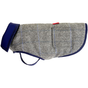 An Alice Foxx blue twed Bertie dog coat