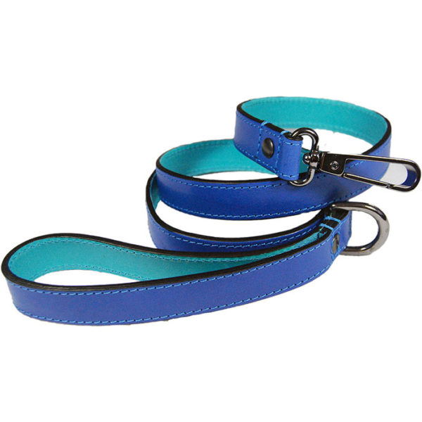 The Alice Foxx Matisse dog lead in azure and cobalt