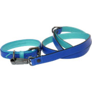 The Alice Foxx Matisse dog lead with matching Matisse dog collar