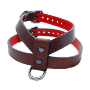 The Alice Foxx Asta dog harness in brown