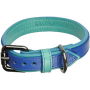 An Alice Foxx Matisse dog collar in contrasting azure and cobalt fine Italian leather