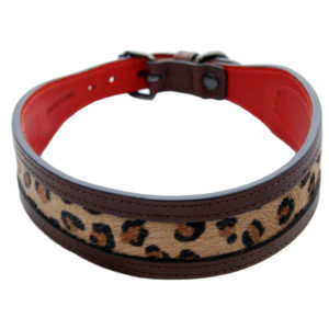 The Alice Foxx Sam dog collar with Leopard print pony hair insert